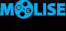 LogoMC_1-1